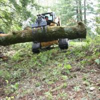 grapple for forest management