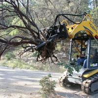 Gehl track loader with removing a tree